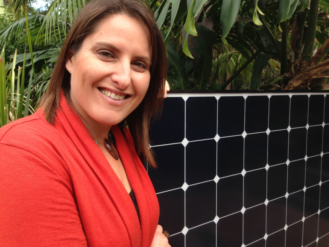 Carolyn Lee - Founder and Director The Energy Efficiency Experts